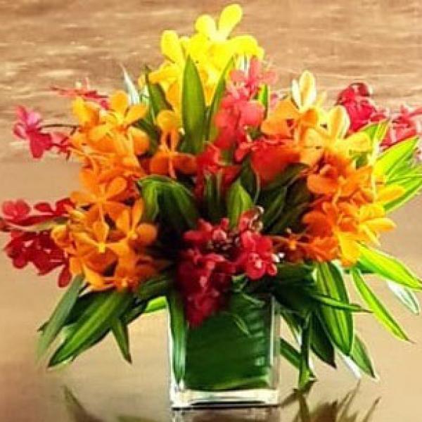 FD 30 Orchid Arrangement
